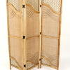 Bamboo & Cane Screens [Assorted Styles]