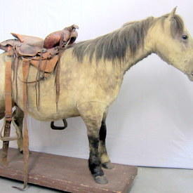 Horse With A Leather Saddle 210cm Long 134cm High
