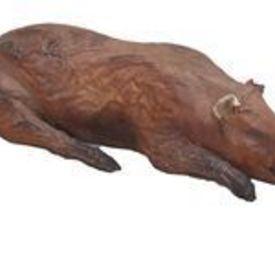 Fake Roasted Pig