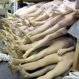 Fake Human Bodies