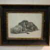 "13""X 11"" Black & Gilt Frame B&W Print, Wild Cat"