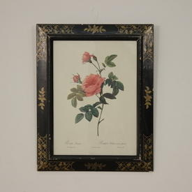 "20"" x  16"" Black Frame Gold Decor Print Of Pink Roses"
