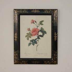 "20""X 16"" Black Frame, Gold DéCor Print Of Pink Roses"
