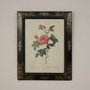 "20""X 16"" Black Frame, Gold DéCor Print Of Pink Roses"