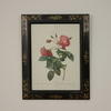 "20""X 16"" Black Frame, Gold Décor Print Of Pink Roses  (Y)"