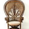 Woven Cane Peacock Chair