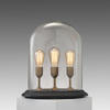 Oval Dome Triple Filiment Table Lamp