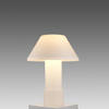White Glass Table Lamp With White Glass Shade