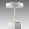 White Metal Eero Table Lamp/White Frosted Glass Shade