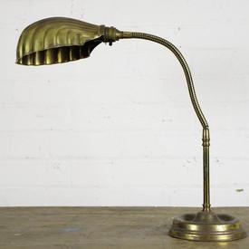 Brass Shell Lamp / Light