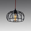 Black Metal Wire Dome Hanging Lamp