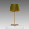 Small Brushed Gold Table Lamp (30cm H)