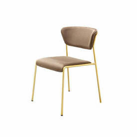 "Bronze Velvet ""Lisa"" Dining Chair on Gold Frame"