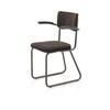 Brown Stripe Fabric Brown Metal Tubular Skid Base Carver Dining Chair