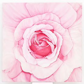 Pink Rose Painting (100  Cm X 100 Cm ) ((Flower))