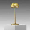 Brushed Gold Cordless Table Lamp & Charger (Charger Rv £40 + Vat If Not Returned)
