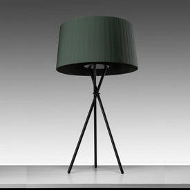 Black Tripod Table Lamp with Green Pleated Shade