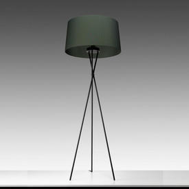 Black Tripod Floor Lamp with Green Pleated Shade