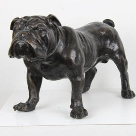Large Bronze Standing Bull Dog