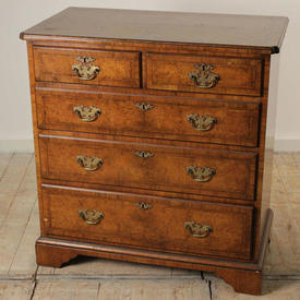 Walnut 5 Drawer Chest Of Drawers with Brass Handles