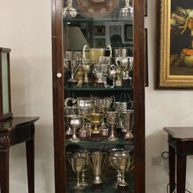 "7' x  2' Mahogany Victorian Glazed Single Door "" Trophy"" Cabinet with Green Baize Covered Shelves"
